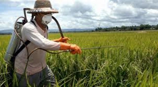 noticia_img_sindicato-de-vicente-dutra-promove-curso-sobre-defensivos-agricolas59847ea2dc6c9